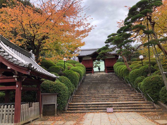 護国寺の入り口
